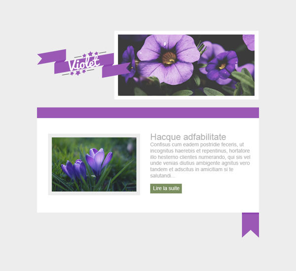Templates Emailing Purple Sarbacane