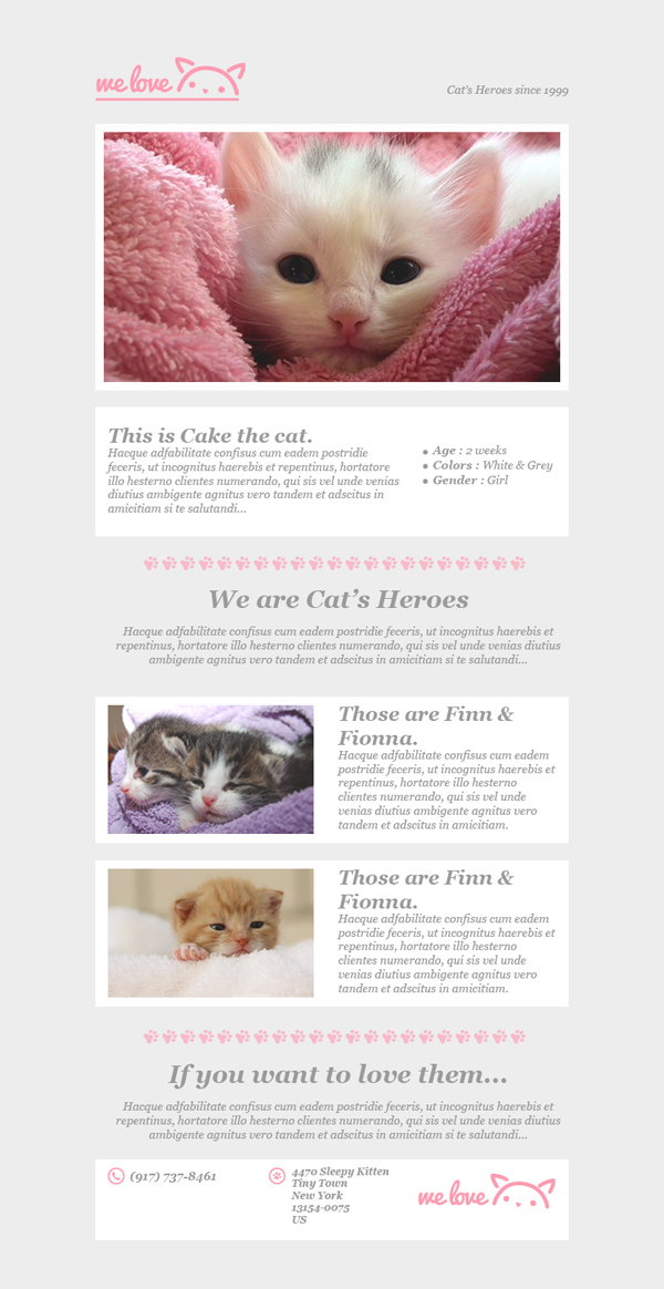 Templates Emailing WeLoveCats Sarbacane