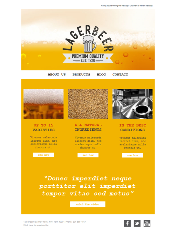 Templates Emailing Brewery Lager Sarbacane