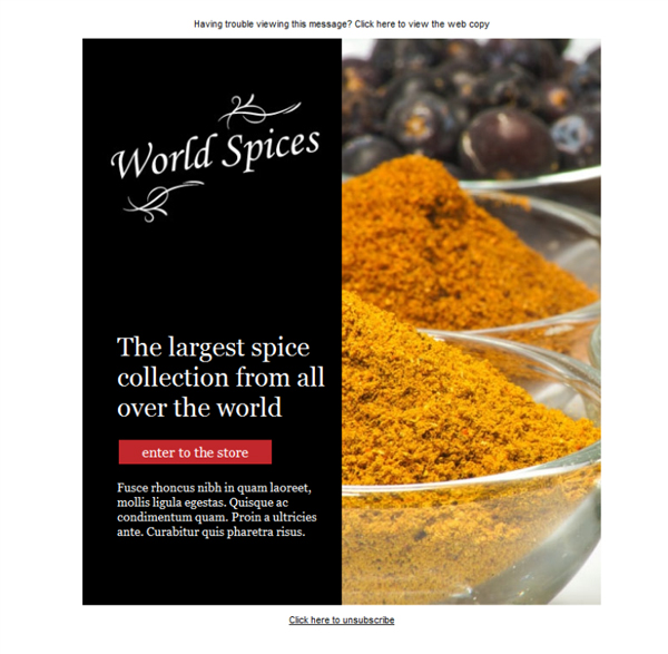 Templates Emailing Specialty Food World Spice Sarbacane
